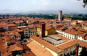 lucca rooftops from tower